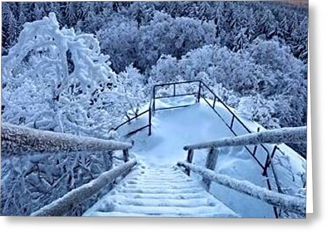 Snow Scenes Greeting Card