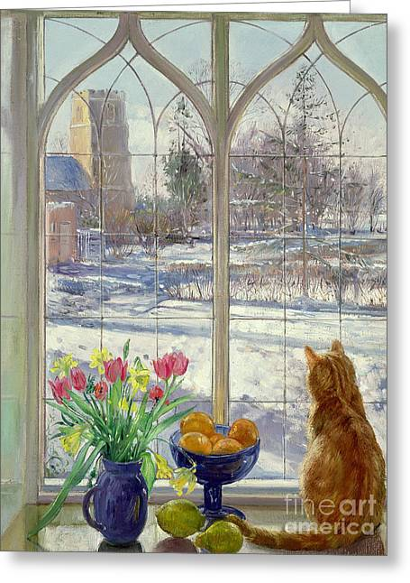 Snow Shadows And Cat Greeting Card by Timothy Easton