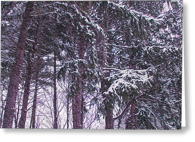 Snow Storm On Pines Greeting Card by Sandy Moulder