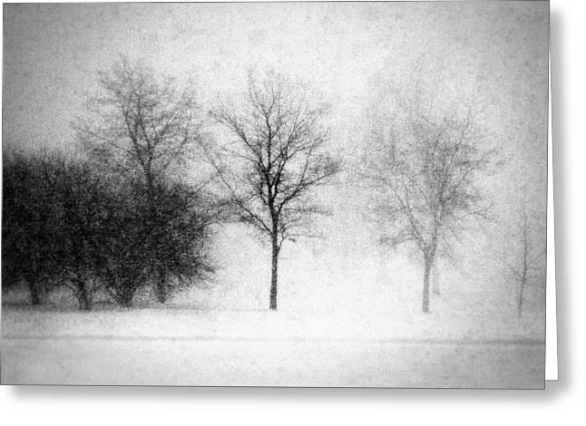 Snow Storm Greeting Card by Todd Klassy