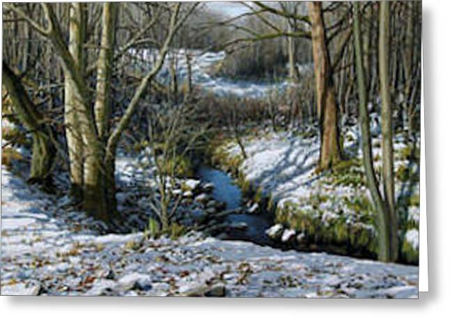Snow Stream Greeting Card by Eugene Conway
