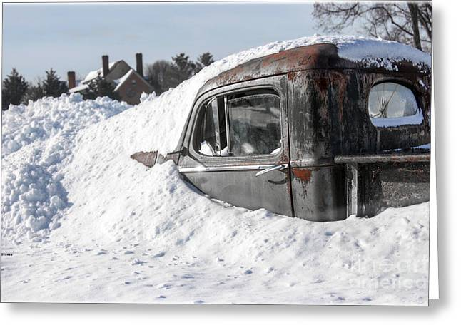 Snow Yard  Greeting Card by Steven Digman