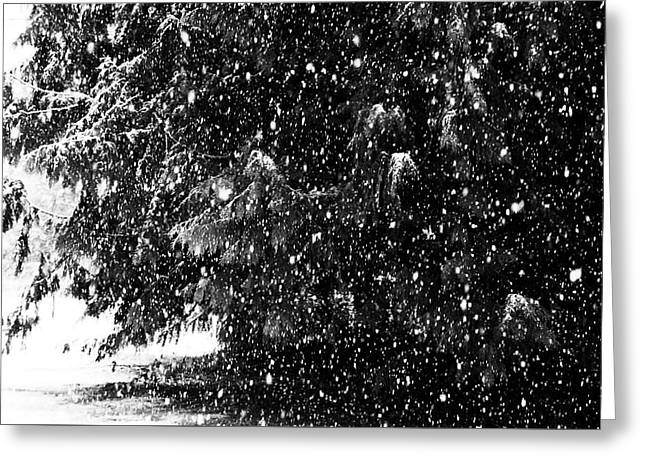 Greeting Card featuring the photograph Snow by Yulia Kazansky