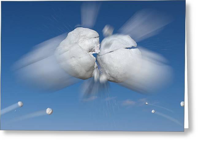 Snowball Flight Greeting Card by Steve Gadomski