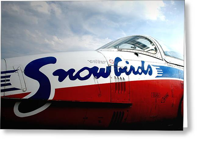 Snowbirds 2 Greeting Card by Mark Alan Perry