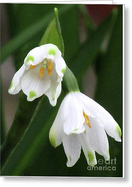 Snowdrops #4 Greeting Card by Kim Tran