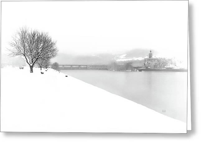 Snowfall On The River Danube At Ybbs Greeting Card