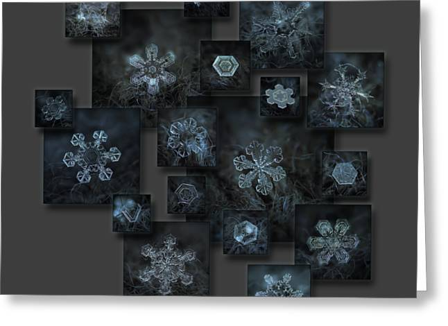 Snowflake Collage - Dark Crystals 2012-2014 Greeting Card