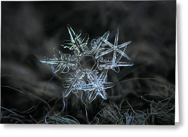 Snowflake Of 19 March 2013 Greeting Card