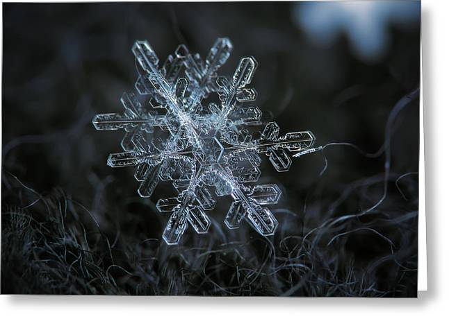Greeting Card featuring the photograph Snowflake Of January 18 2013 by Alexey Kljatov
