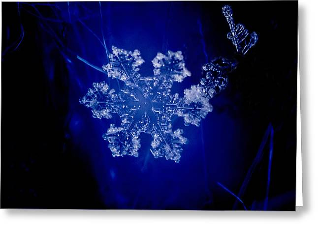 Snowflake On Blue Greeting Card