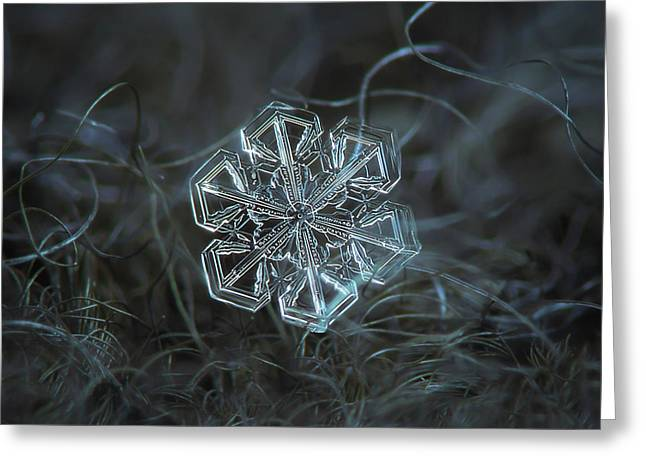 Greeting Card featuring the photograph Snowflake Photo - Alcor by Alexey Kljatov