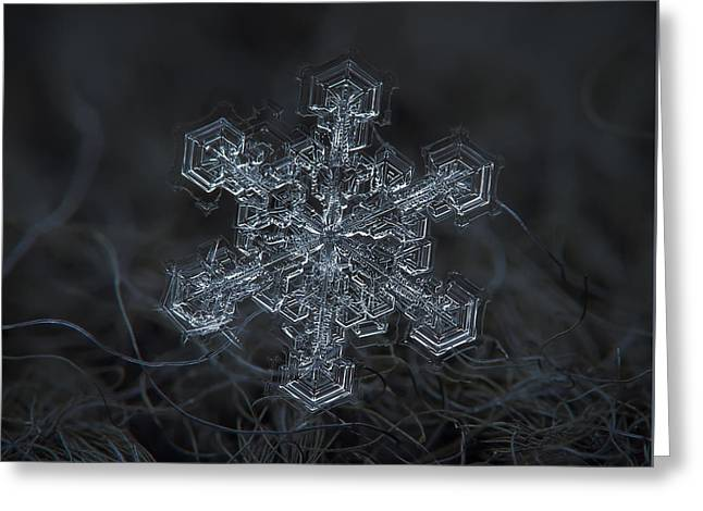 Snowflake Photo - Complicated Thing Greeting Card