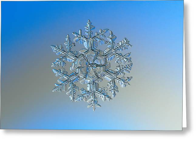 Greeting Card featuring the photograph Snowflake Photo - Gardener's Dream by Alexey Kljatov