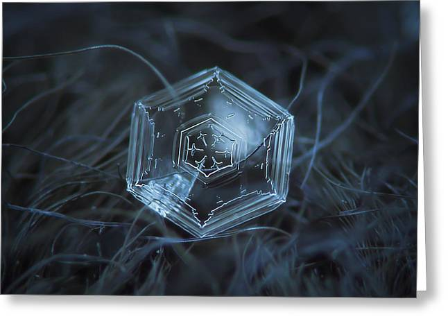 Greeting Card featuring the photograph Snowflake Photo - Hex Appeal by Alexey Kljatov