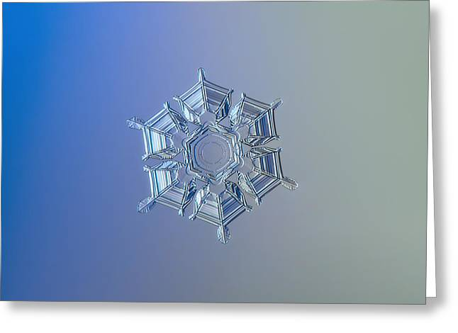 Snowflake Photo - Ice Relief Greeting Card by Alexey Kljatov
