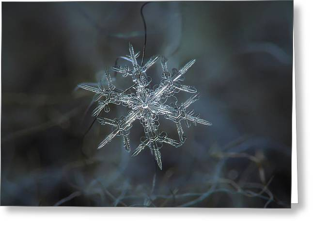 Greeting Card featuring the photograph Snowflake Photo - Rigel by Alexey Kljatov
