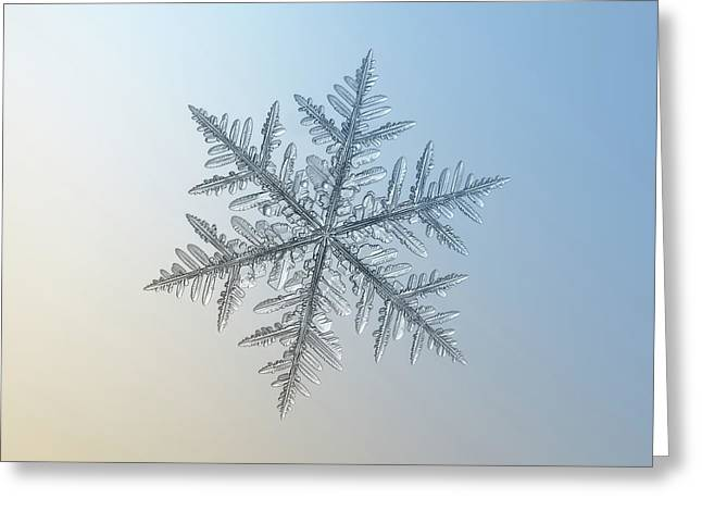 Greeting Card featuring the photograph Snowflake Photo - Silverware by Alexey Kljatov