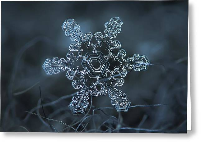 Snowflake Photo - Slight Asymmetry Greeting Card