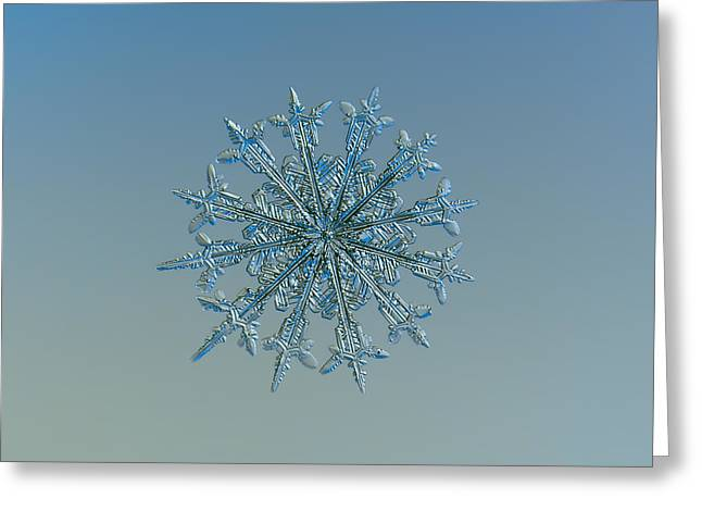 Greeting Card featuring the photograph Snowflake Photo - Twelve Months by Alexey Kljatov
