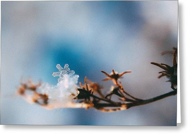 Snowflake Greeting Card by Tracy  Jade