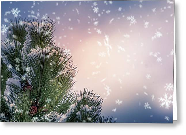 Snowflakes Greeting Card by Art Spectrum