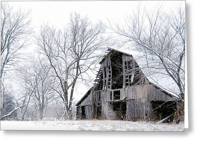 Snowmageddon  Greeting Card by Dusty Weter