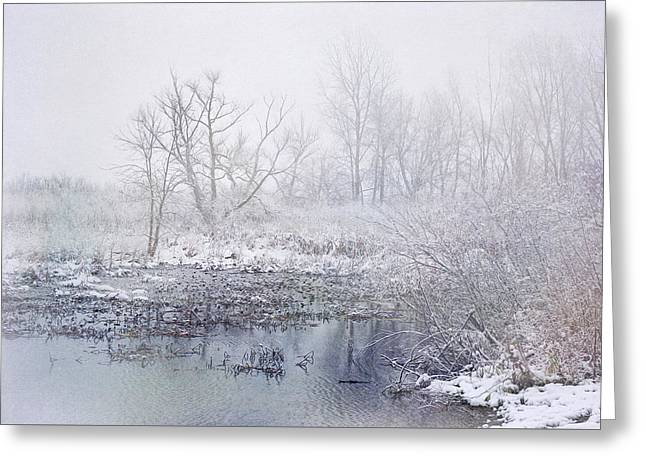 Snowmist Marsh Greeting Card by Kathi Mirto