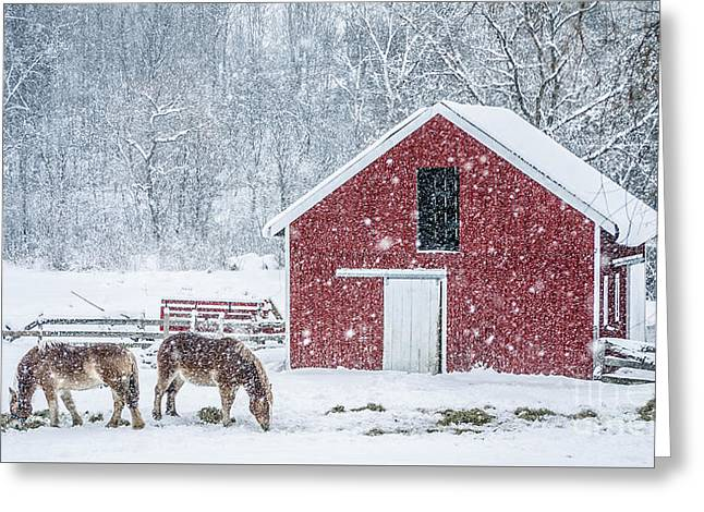 Snowstorm Stowe Vermont Greeting Card by Edward Fielding