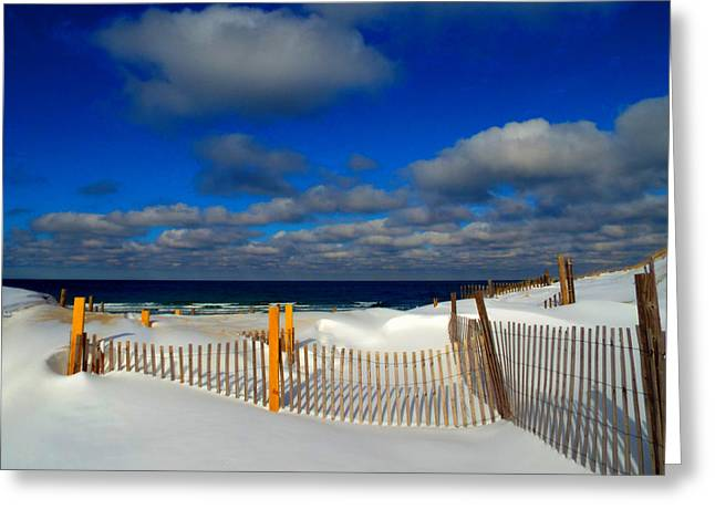 Snowy Beach  Greeting Card by Dianne Cowen