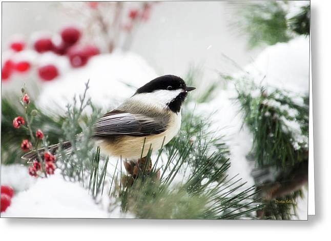 Snowy Chickadee Bird Greeting Card