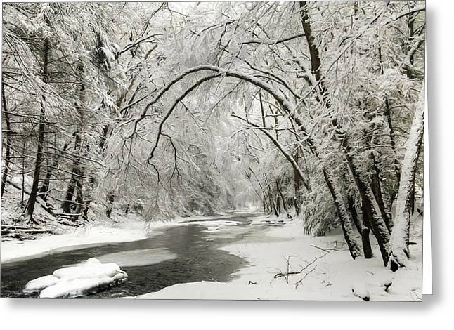 Snowy Clarks Creek Greeting Card by Lori Deiter