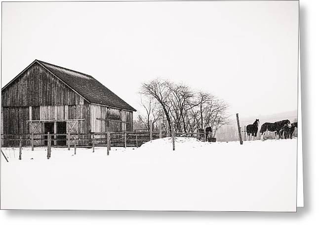 Snowy Day At The Farm Greeting Card
