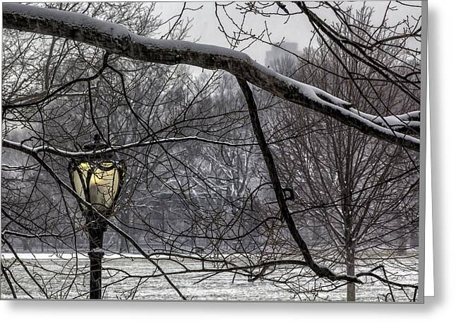 Snowy Day Central Park Nyc Greeting Card by Robert Ullmann