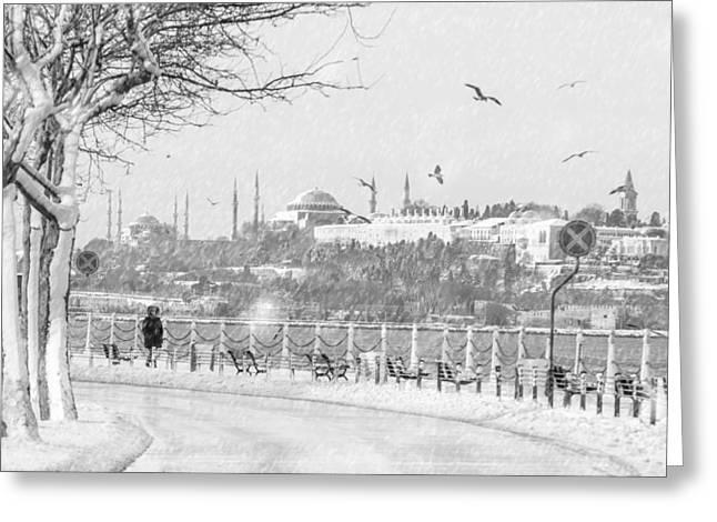 Snowy Day In Istanbul Greeting Card by Ayhan Altun