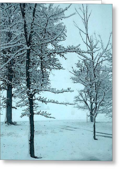 Greeting Card featuring the photograph Snowy Day by Michelle Audas