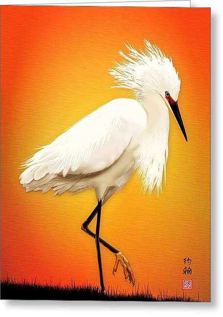 Snowy Egret At Sunset Greeting Card by John Wills