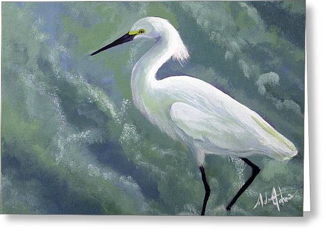 Snowy Egret In Water Greeting Card