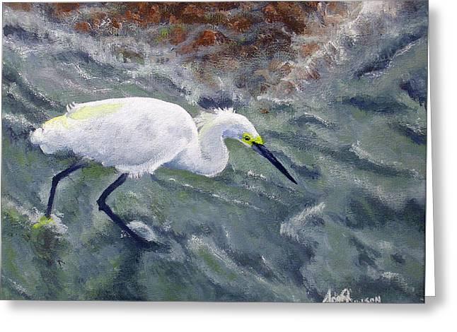 Snowy Egret Near Jetty Rock Greeting Card