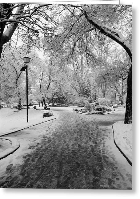 Snowy Entrance To The Park Greeting Card by Rae Tucker