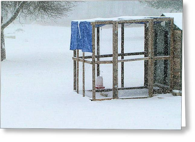 Greeting Card featuring the photograph Snowy Hen House by Barbara Giordano