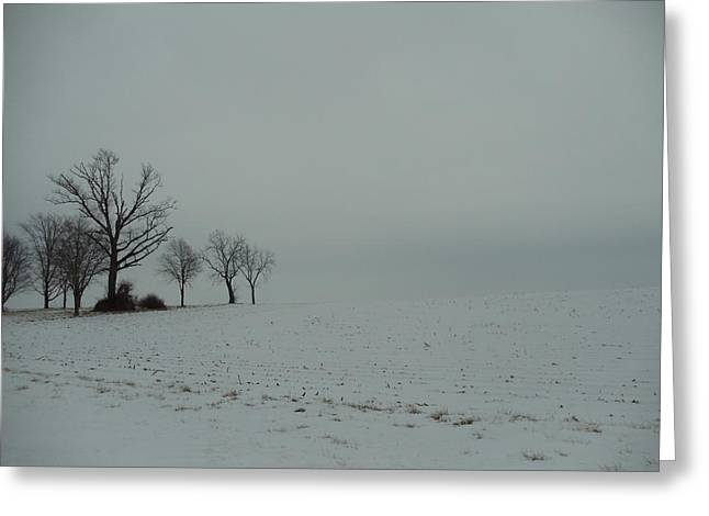 Snowy Illinois Field Greeting Card