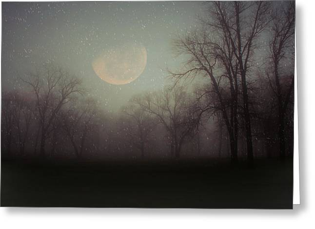 Moonlit Dreams Greeting Card by Inspired Arts