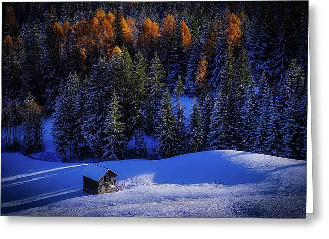Snowy Mountain Hideaway Greeting Card by Rottonara