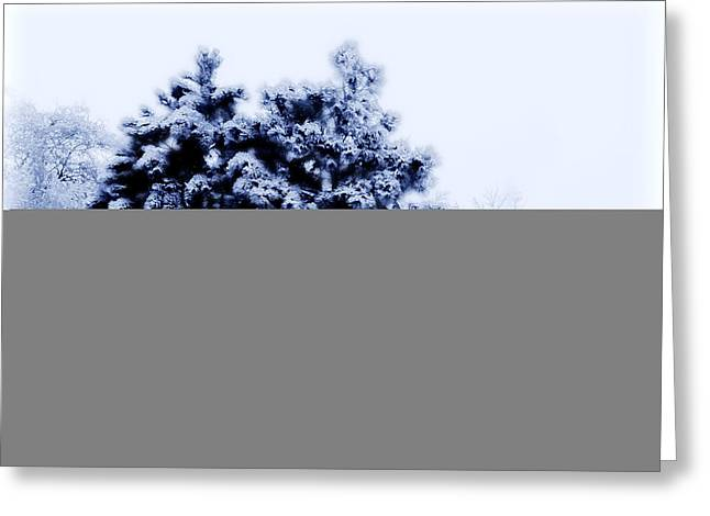 Christmas Greeting Greeting Cards - Snowy Pines Greeting Card by Julie Hamilton