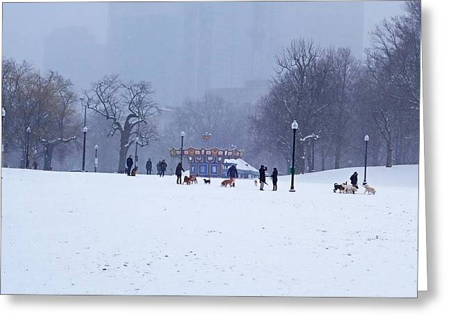 Snowy Playtime Boston Common Boston Ma Greeting Card by Toby McGuire