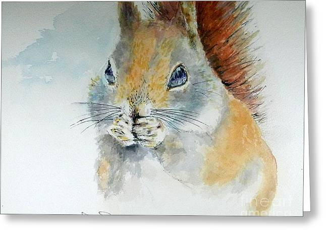 Snowy Red Squirrel Greeting Card by William Reed