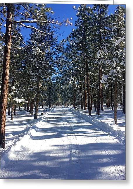 Snowy Road Greeting Card