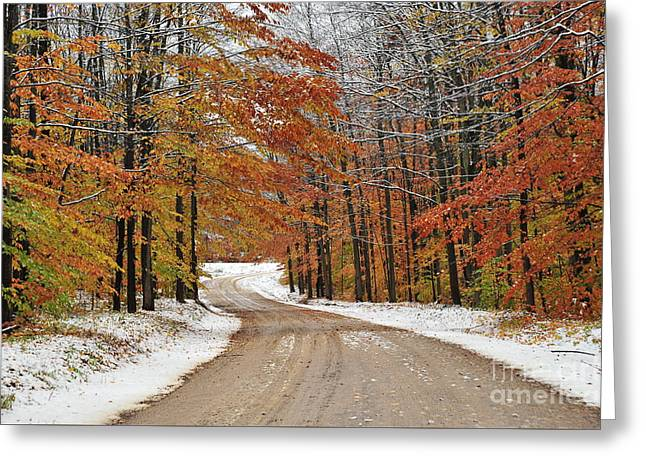 Snowy Road Through Autumn Greeting Card