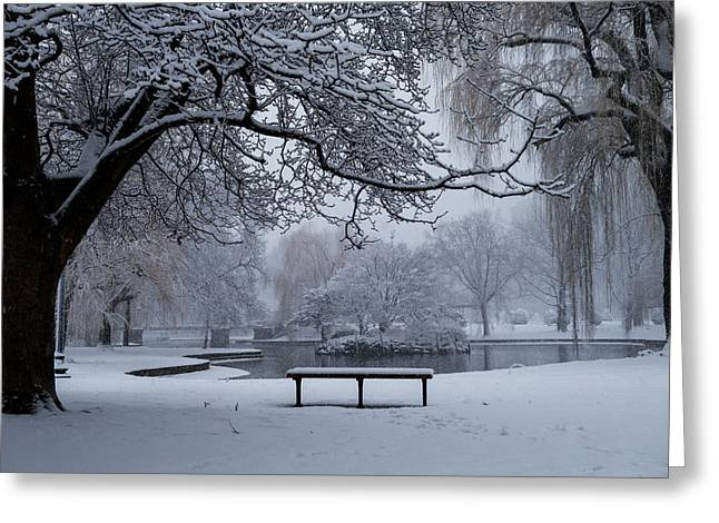 Snowy Tree The Public Garden Boston Ma Bench Greeting Card